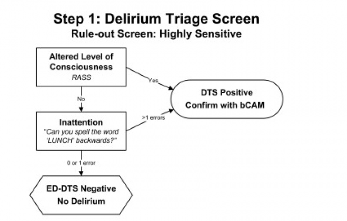 delirium, triage, consciousness, dts, bcam, inattention, ed-dts, cam,